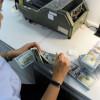 Hơn $5 tỷ kiều hối đổ về Sài Gòn