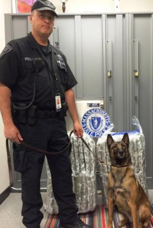 Massachusetts State Trooper Eric Pecjo and his K9, Zeva, stand in front of roughly 100 pounds of marijuana that were confiscated Wednesday after police arrested a San Jose man who allegedly flew from San Francisco to Boston with the marijuana inside his two suitcases.
