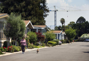 With a construction crane from Santana Row in the background, Alba Salciccia, 76, walks her dog, Fernando, at the Winchester Ranch mobile home park in San Jose, Calif., on Friday, July 31, 2015. (LiPo Ching/Bay Area News Group)